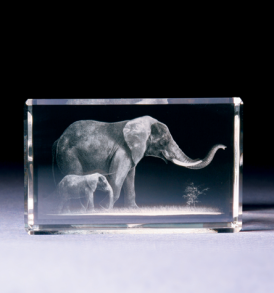 3D_Animals_Elephants