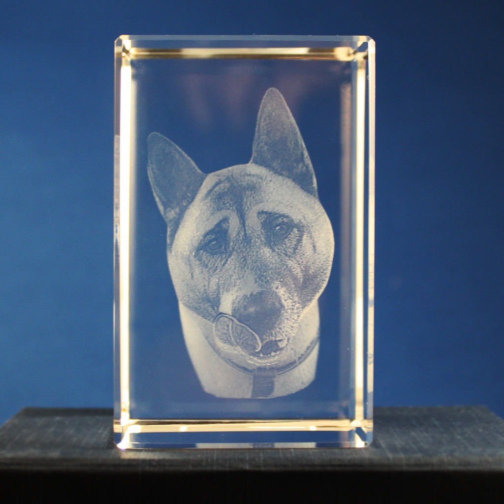 3D Crystal Photographs.